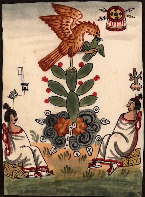 two rulers sit in the foreground as an eagle devours a bird while perched on a flowering cactus