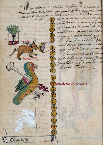 A bird with yellow feathers is shown stabbed with a bone tool. Also included is a bull and moon, as well as a symbol with many leaves.