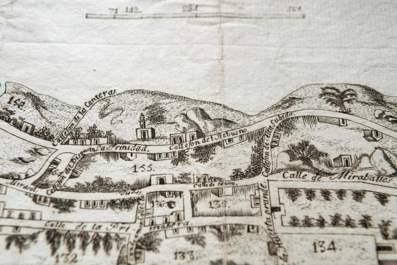 """Detail of an engraved city plan of Queretaro shows numbered blocks in the city's layout, streets labelled in Spanish reading """"Calle de Miraballes"""" and so on. Details also include at least three distinct types of plants."""
