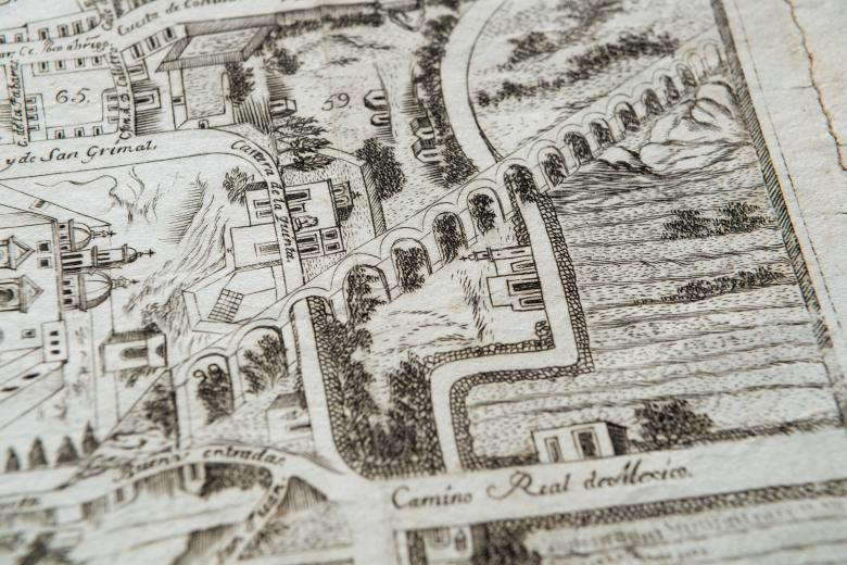 Detail of an engraved city plan of Queretaro shows numbered blocks in the city's layout and streets labelled in Spanish. Various distinct plants are visible.