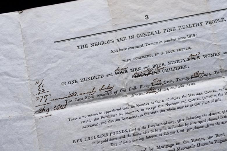 Detail of printed document shows text that describes the conditions of slaves alongside manuscript notations.