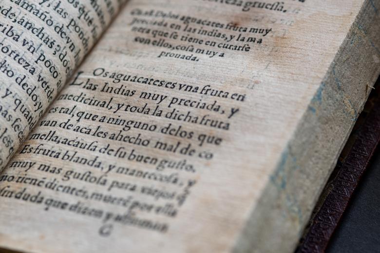 """Detail from a printed book shows text in Spanish reading """"Los aguacates es uno fruta en las Indias muy preciada, y medicinal."""""""