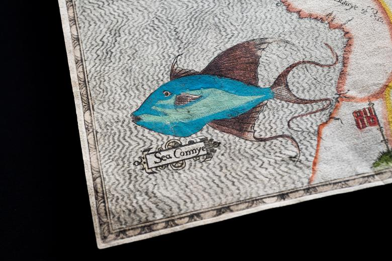 """Detail of a colored, engraved map shows a large blue fish with the label """"Sea Connye"""" and a flag."""