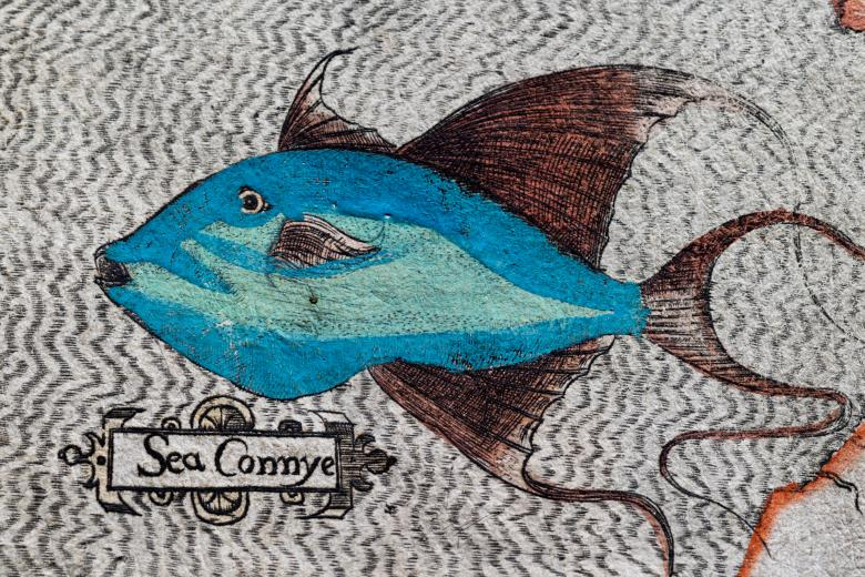 """Detail of a colored, engraved map shows a large blue fish with the label """"Sea Connye."""""""