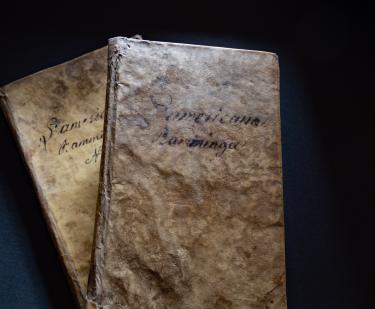 Two books bound in vellum with manuscript writing on them are pictured on top of each other.