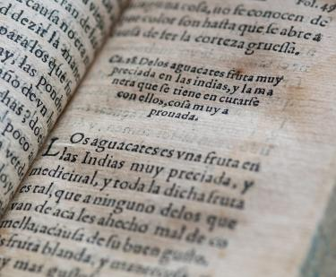 "Detail from a printed book shows text in Spanish reading ""Los aguacates es uno fruta en las Indias muy preciada, y medicinal."""