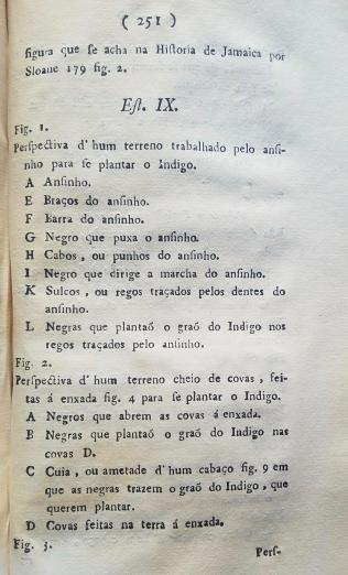 printed text in Portuguese