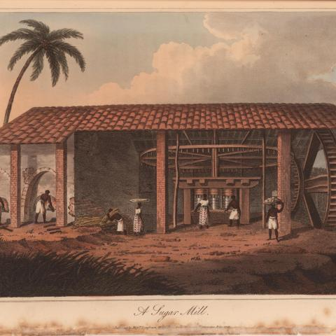 Black people work at a sugar mill with clouds and a palm tree outside