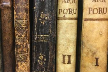 Photograph of book bindings found at the John Carter Brown Library.